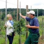 Martina Fehlner bei einem Ortstermin in der Gemeinschaftsplantage in Röllbach (Landkreis Miltenberg) im Gespräch mit Obstbauer Andras Stegmann.