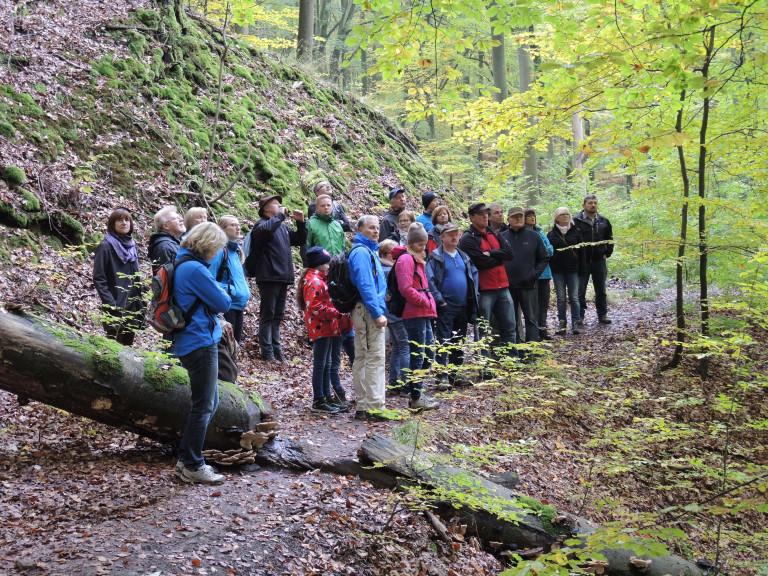 Schutzgebiet Böhlgrund 1